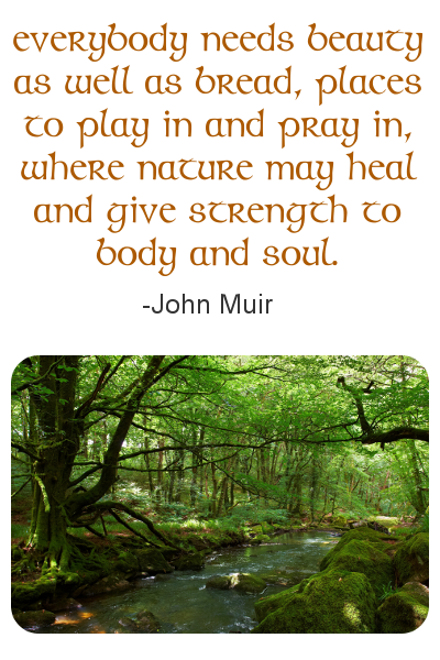 John Muir quote graphic